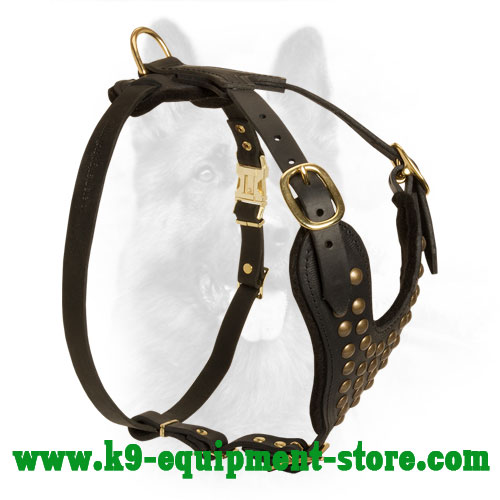 Leather Harness for K9 Walking in Style