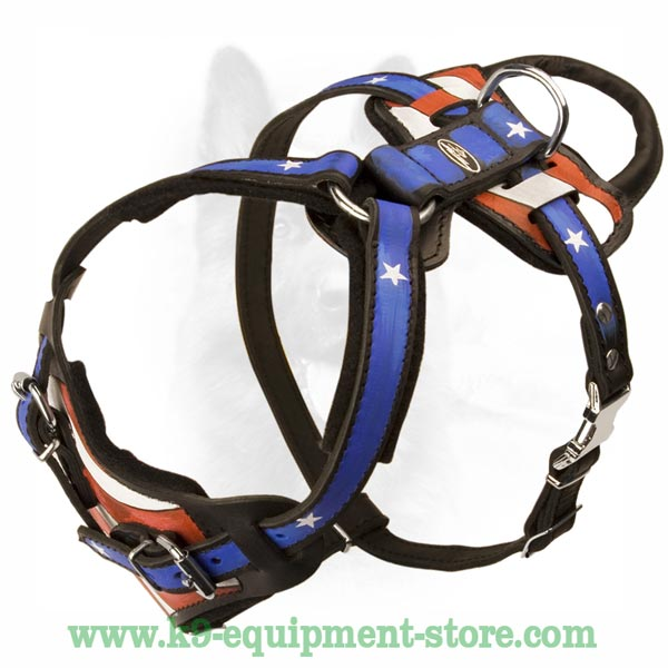 Practical Leather Harness For K9 Dog
