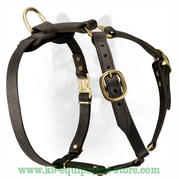 Dog Harness With Massive Brass Ring For Leash Attachment