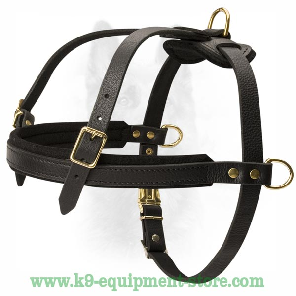 Rust Resistant K9 Leather Dog Harness
