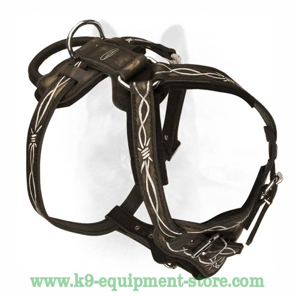 High-Quality Natural Leather Dog Harness For K9