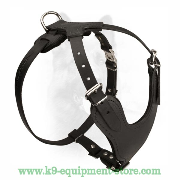 Dog Harness With Rust And Corrode Resistant Fittings