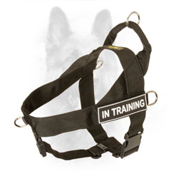 Nylon Dog Harness with Be-in-control Handle