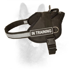K9 Dog Harness Nylon with Stitched D-ring