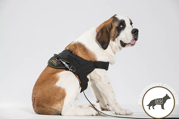 Lightweight design Moscow Watchdog harness