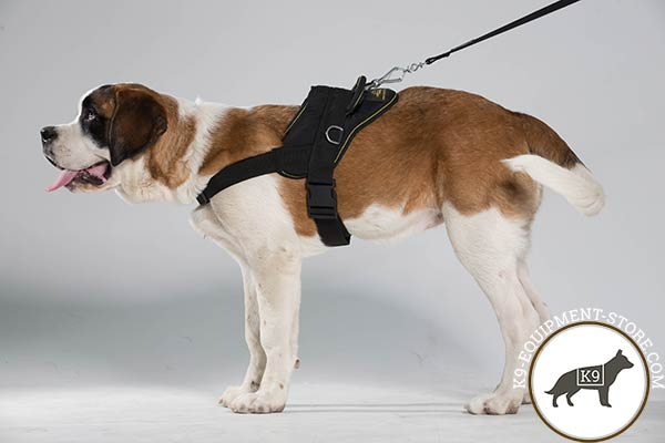 Moscow Watchdog nylon harness with durable fittings for quality control