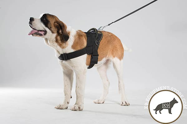 Moscow Watchdog nylon harness of lightweight material with d-ring for leash attachment for daily walks