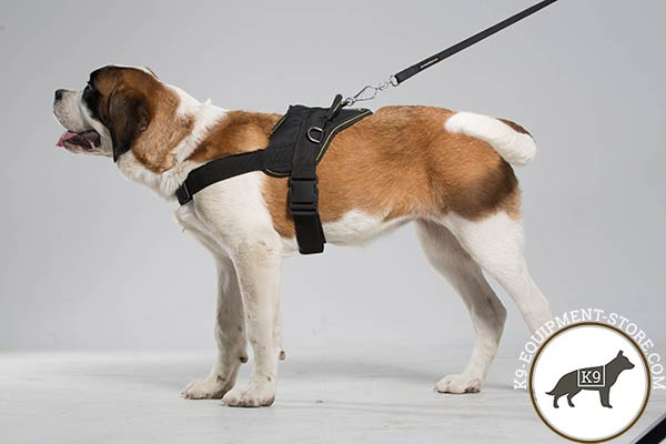 Moscow Watchdog nylon harness of lightweight material with d-ring for leash attachment for perfect control