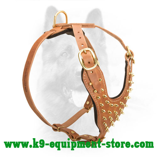 Leather K9 Harness with Brass Spikes