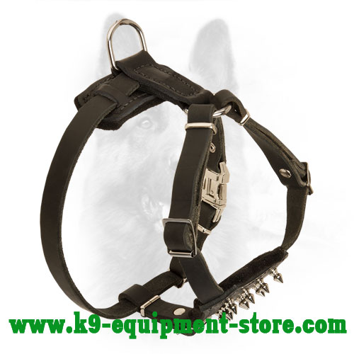 Canine Puppy Leather Harness with Rust Resistant Hardware