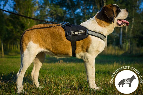 Lightweight Russian Watchdog harness