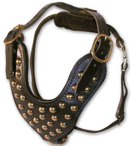 2 Ply Studded Leather Dog Harness for DOG