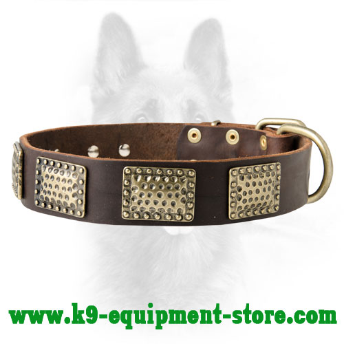 Luxury Leather Dog Collar With Massive Plates For K9 Dogs