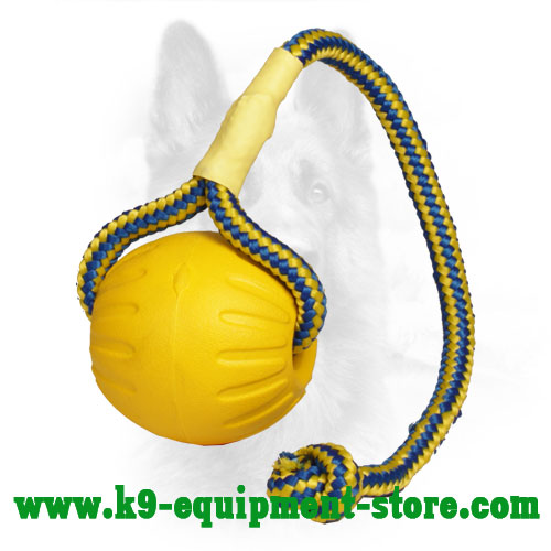 Foam Dog Training Ball with Nylon Rope