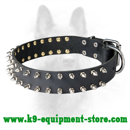 Canine Leather Spiked Dog Collar With Shining Spikes
