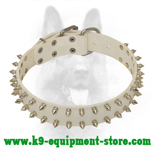Mystique White Leather K9 Collar with Nickel Spikes