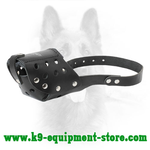 Agitation Training Leather Canine Muzzle with One Strap