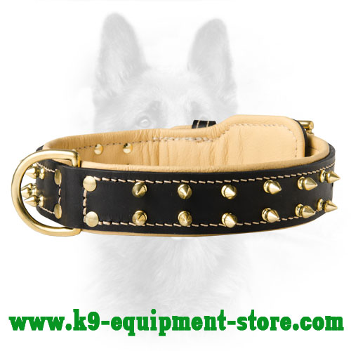 Leather Working Dog Collar With Fur Protection Plate For Canine