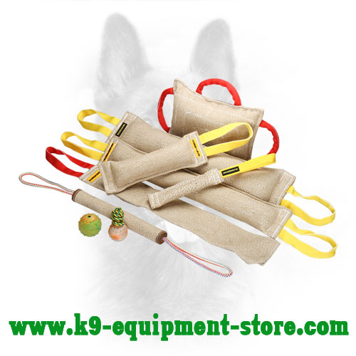K9 Jute Training Set with Gift Toys and Bite Roll