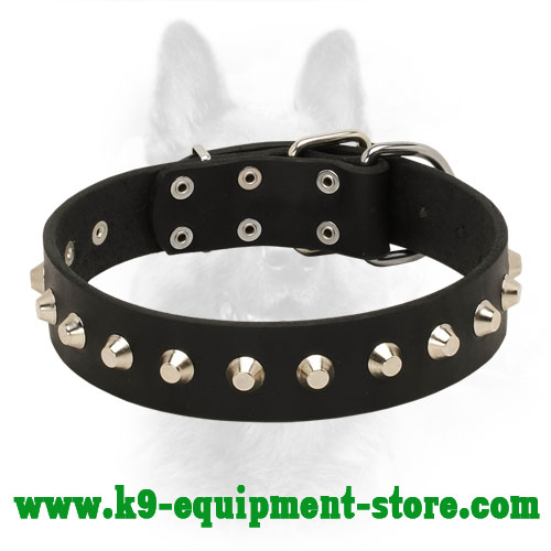 1 Row Nickel Studded Leather K9 Collar for Dog Walking in Style and Basic Training