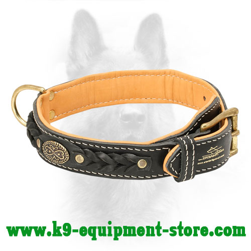 Braided Leather Custom Dog Collar For Canines
