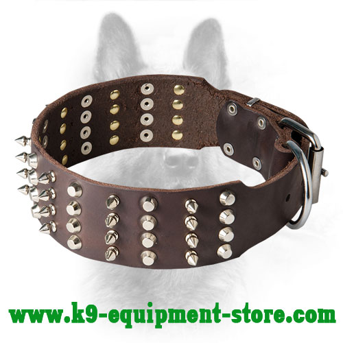 2 inch Spiked and Studded Canine Leather Dog Collar