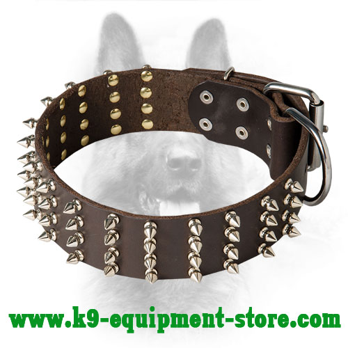 Leather Spiked Canine Dog Collar