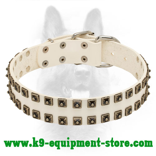 'Caterpillar' Design Studded White Leather Collar for Police Dogs
