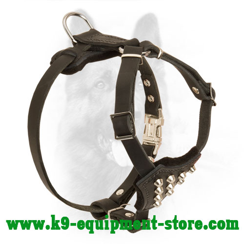 Extraordinary Studded Leather Harness for Police Dog Walking
