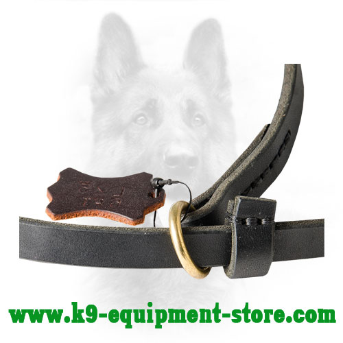 Rust Resistant Brass Floating Ring of Leather Dog Leash