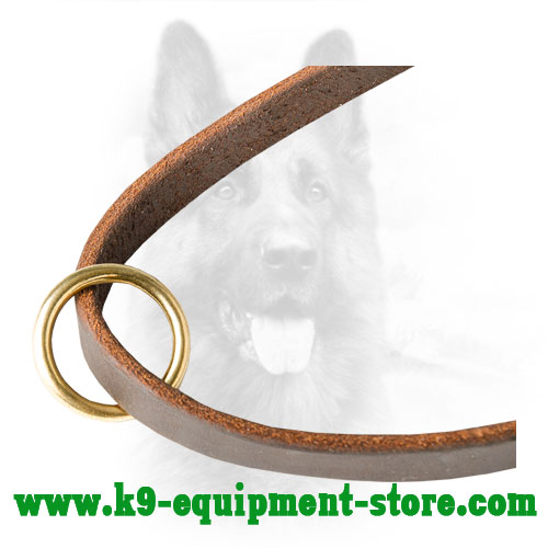 Floating Ring Made of Brass on Leather Dog Leash