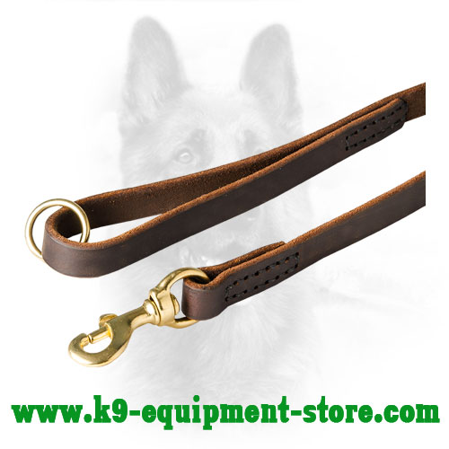Rust Resistant Brass Hardware of Leather Dog Leash