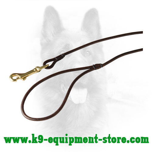 Leather Dog Lead with Brass Snap Hook