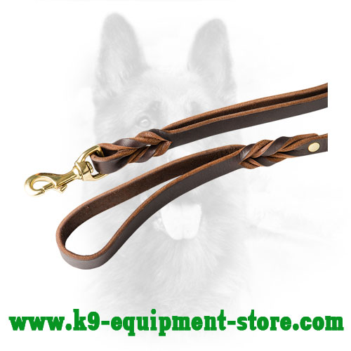 Rust Resistant Brass Snap Hook of Leather Dog Leash