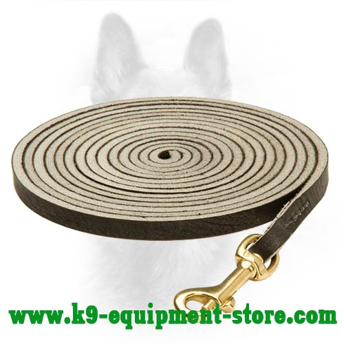 K9 Dog Leash With A Durable Brass Snap Hook