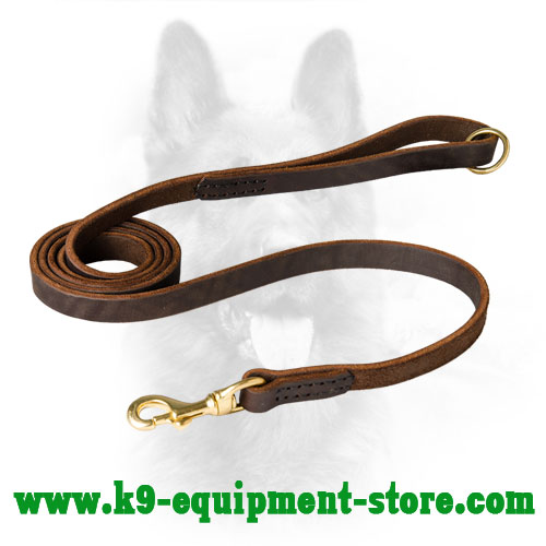 Daily Walking Leather Dog Lead