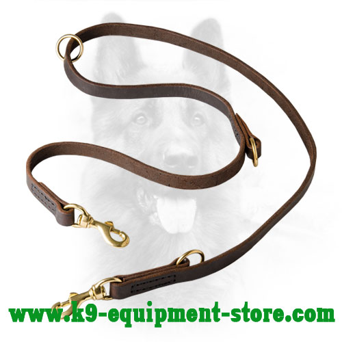 Multifunctional Leather Dog Lead