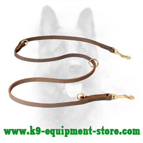 Multimode Leather Dog Leash Brown