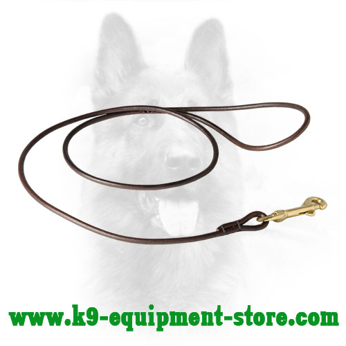 Round Canine Leash Leather Show