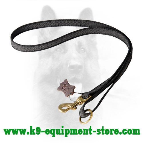 Multimode Nylon Dog Leash with Brass Floating Ring