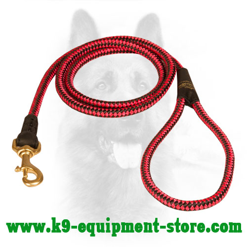Nylon Dog Lead Walking All-Weather