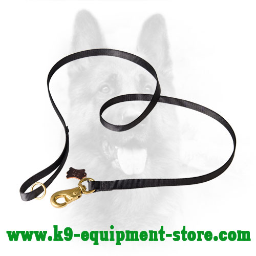 Water Resistant Nylon Dog Lead with Brass Hardware