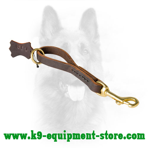 Leather Pull Tab Dog Lead