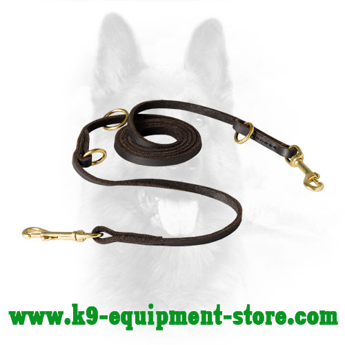 Canine Dog Lead Leather with Brass Hardware