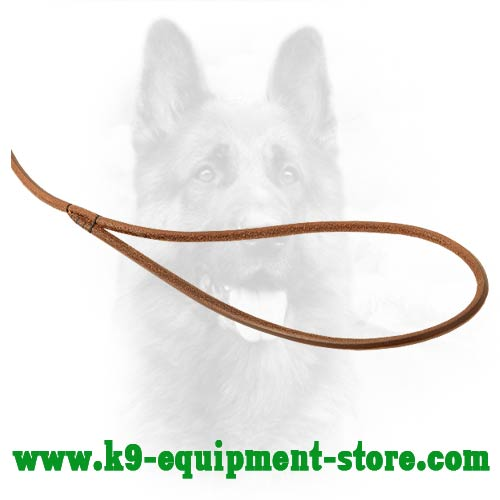 K9 Leash with Round Handle