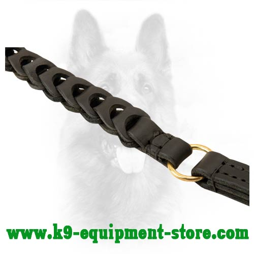 Firm Dog Leash With Durable Fittings