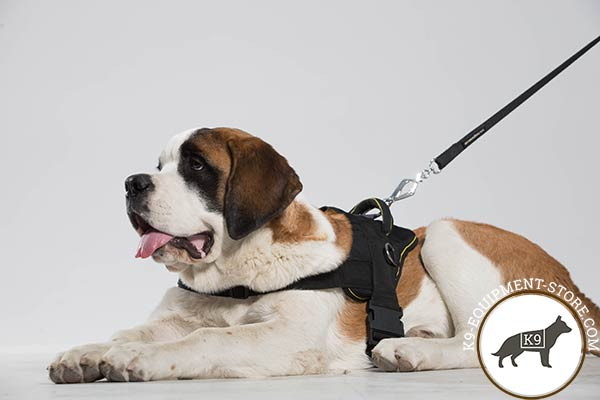 Moscow Watchdog nylon leash with strong nickel plated hardware for professional use