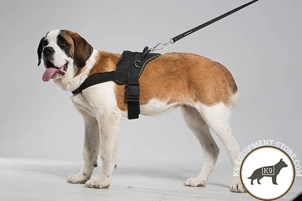 Moscow Watchdog nylon leash with reliable nickel plated hardware for quality control