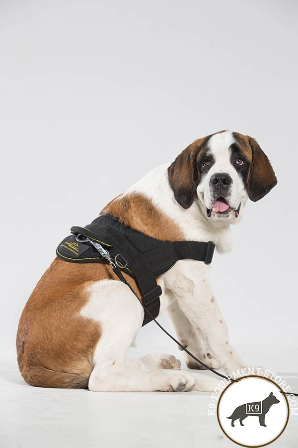 Moscow-Watchdog nylon-leash with corrosion resistant nickel plated hardware for improved control