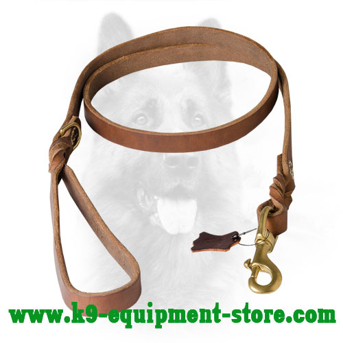 Durable Walking and Training Leather K9 Leash with Braids